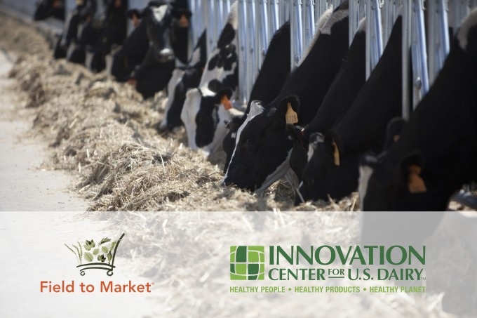 dairy innovation