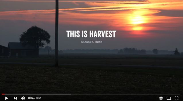 This is Harvest
