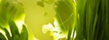 sustainability spotlight