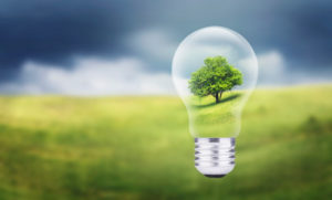 Sustainability Insights, Ideas and Opinions