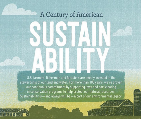Century of American Sustainability
