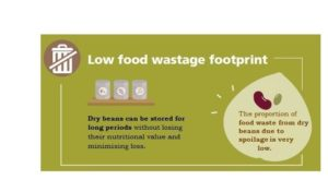 dry beans low food wastage