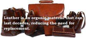 Leather is organic