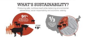 what is beef sustainability