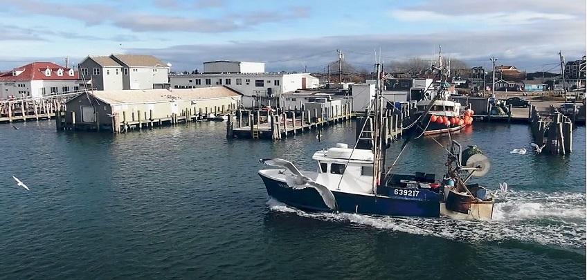 seafood in northeast U.S.